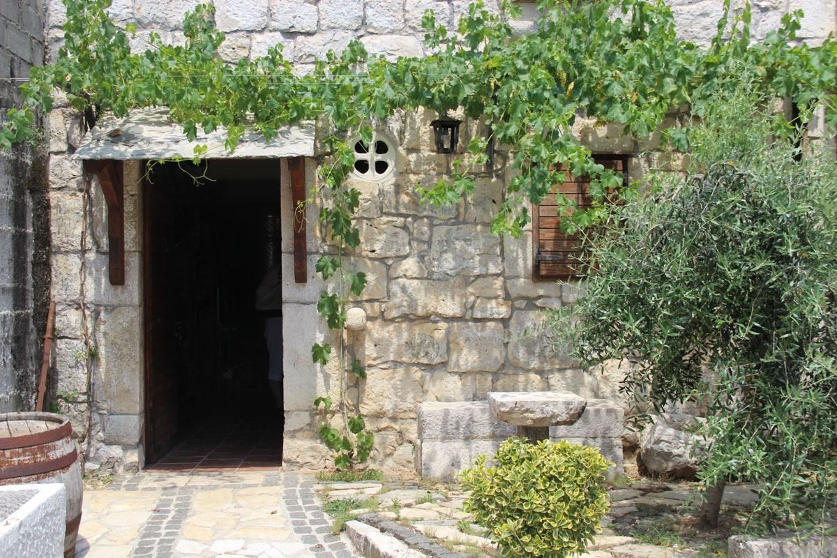 Antunović winery